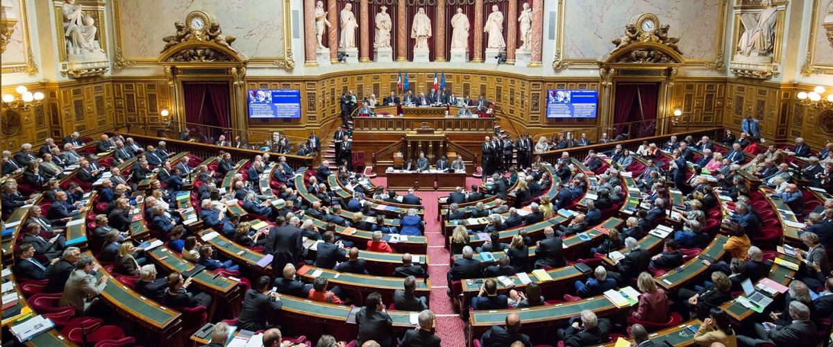 Mon opposition à la proposition de loi « Anti casseurs » et ma saisine du Conseil constitutionnel