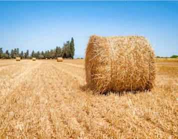 Le gouvernement bloque la revalorisation des retraites agricoles