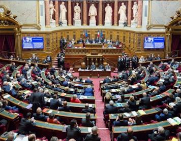 Loi Bioéthique au Sénat : un vote positif malgré les nombreux reculs
